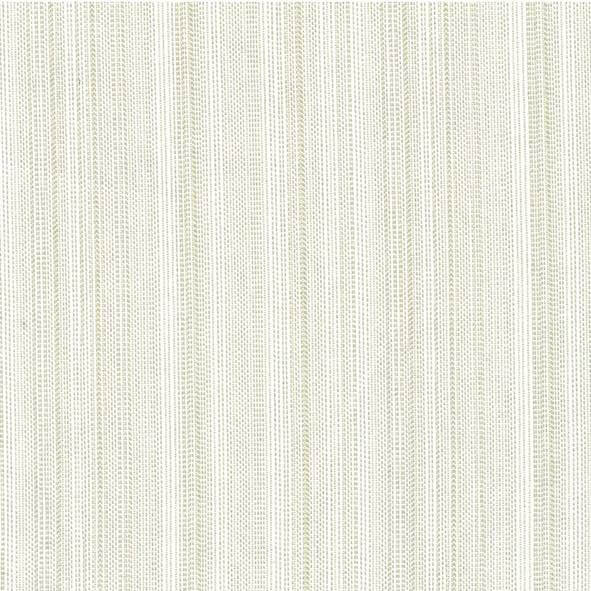 Galloon Silver Fabric - 106473