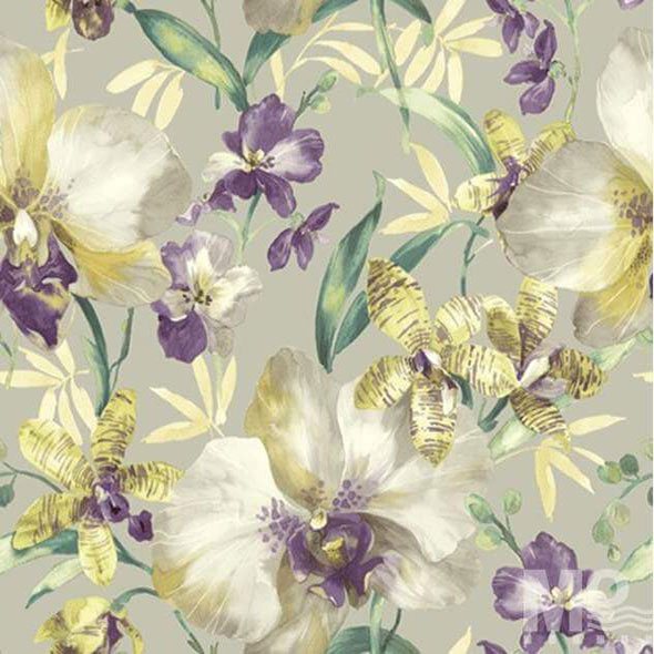 Watergold Orchid Wallpaper - 84036