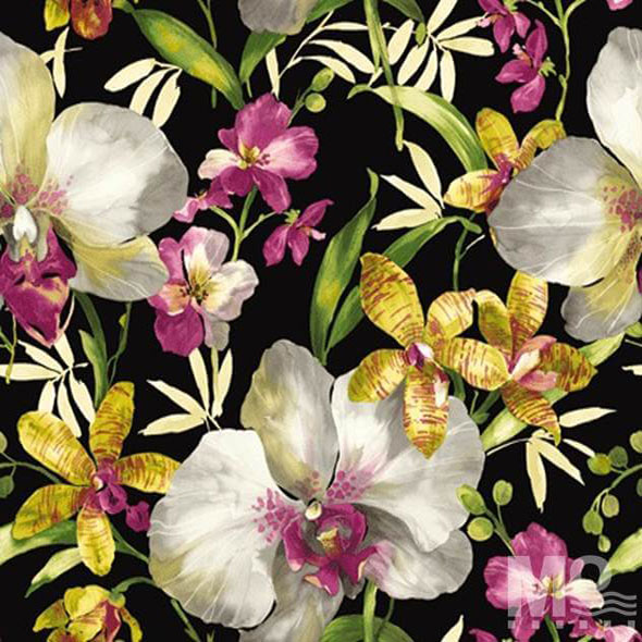Rosecamilla Black Wallpaper - 84038