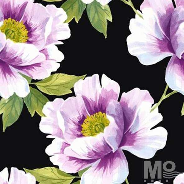 Aubrey Rose Black Wallpaper - 84055